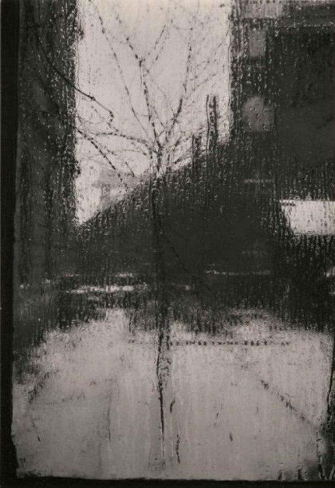 Йозеф Судек. Окно моей студии. Прага, 1941-1954.