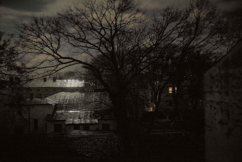 """Борис Савельев. """"Moon light"""", 2016"""